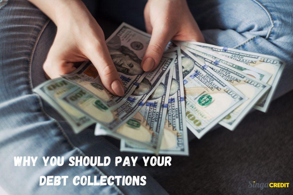 licensed moneylender
